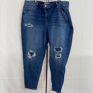 Lane Bryant Distressed Tapered Jeans